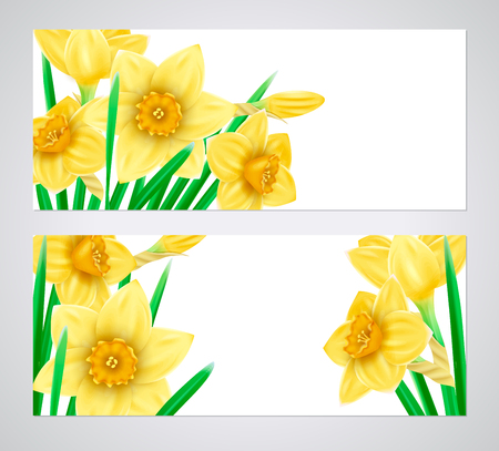 A set of banners with 3d yellow daffodils. Spring floral paper stickers. Vector illustration. Imagens - 124091106