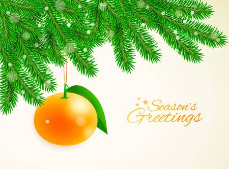 Christmas and New Year vector background with fir branches and hanging mandarine 向量圖像