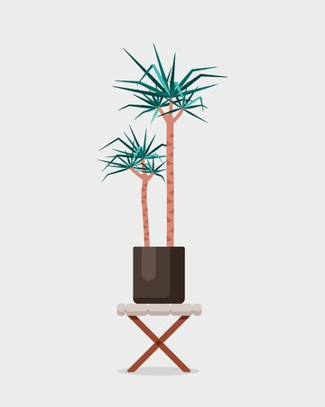 Vector flat illustration of home plant Dracaena on wood stand. Colorful Indoor plant in brown pot for your design. Illustration