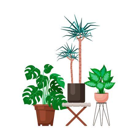 Vector flat design interior plants illustrations set