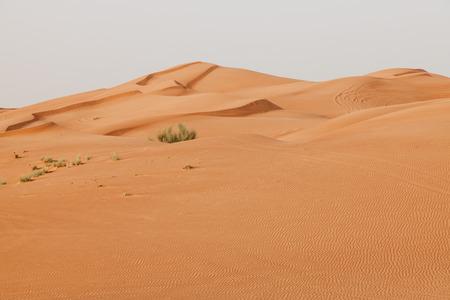 sandy brown: Arabian desert Stock Photo