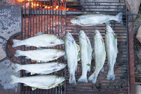 stoking: Cooking fish on a campfire