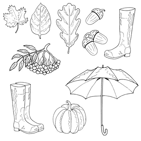 Set of autumn objects. Maple leaf, an oak leaf, an acorn, rubber boots, an umbrella, a rowan, a pumpkin. Hand drawing. Vector illustration. 일러스트
