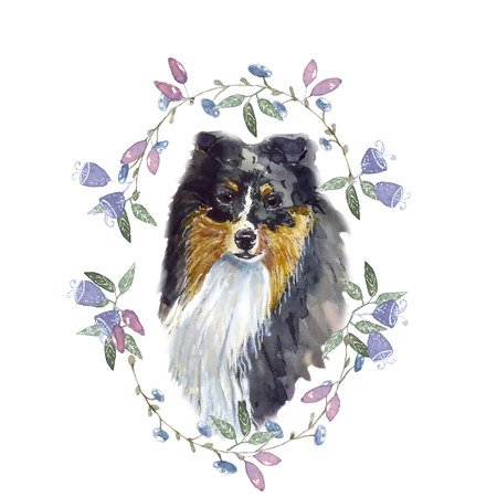 sheepdog: Shetland Sheepdog watercolor Dog watercolor, a wreath of leaves and berries Stock Photo