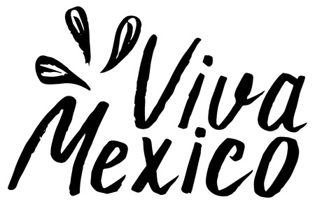 Viva Mexico, lettering vector illustration, traditional mexican phrase holiday