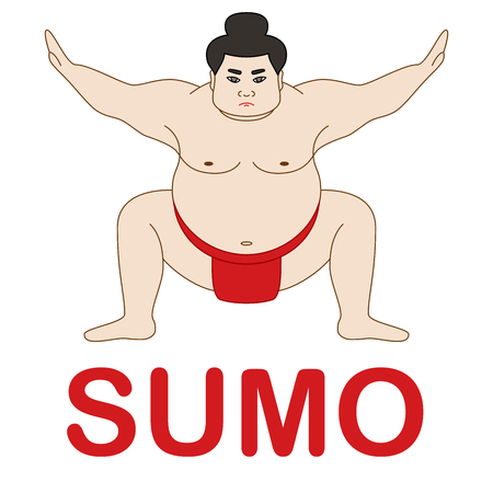 Isolated illustration of sumo wrestler, colorful drawing, white background Reklamní fotografie - 97524202