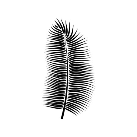 Dypsis for decorative design. Isolated sign symbol. Isolated vector illustration. Summer tropical leaf of dypsis. Natural plant symbol. Vector background. Exotic forest tree icon