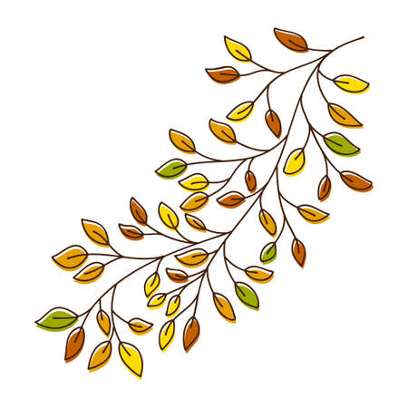 Vector of a autumn birch tree branch. Hand drawn leaves and branch isolated on white. Doodle birch autumn leaves for design. Vector illustration. Botanical print. Organic natural shape 矢量图像