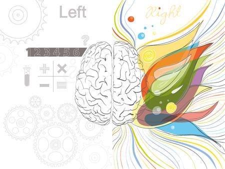 El funcionamiento del cerebro izquierdo y derecho 10 EPS No degradados Transparencia