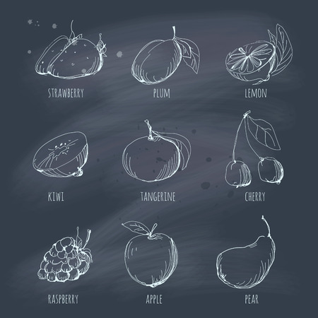Sketchy set of fruit on a blackboard  EPS 10  No gradients  Transparency  Vector