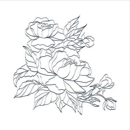 Hand drawn branch of roses.  No transparency. No gradients.