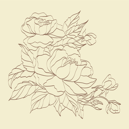 Sepia hand drawn branch of roses.  No transparency. No gradients. Vector