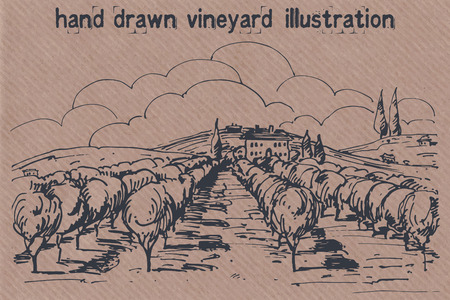 Hand drawn illustration of a vineyard. EPS 10. No transparency. No gradients. Vector