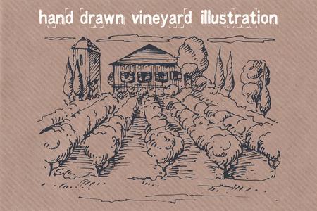 Hand drawn illustration of a vineyard. EPS 10. No transparency. No gradients. Vector