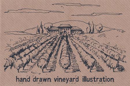 Hand drawn illustration of a vineyard. EPS 10. No transparency. No gradients.