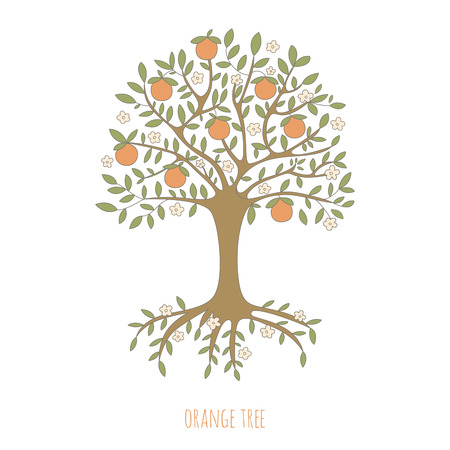 Illustration of an orange tree. EPS 10. No transparency. No gradients. Ilustração