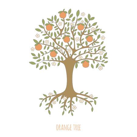 Illustration von einem Orangenbaum. EPS 10. Keine Transparenz. Keine Steigungen. Standard-Bild - 31295296