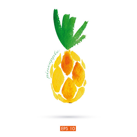 Watercolor illustration of pineapple. Vector
