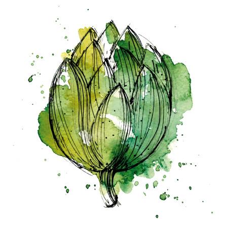 Aquarel illustratie van de artisjok. Stock Illustratie