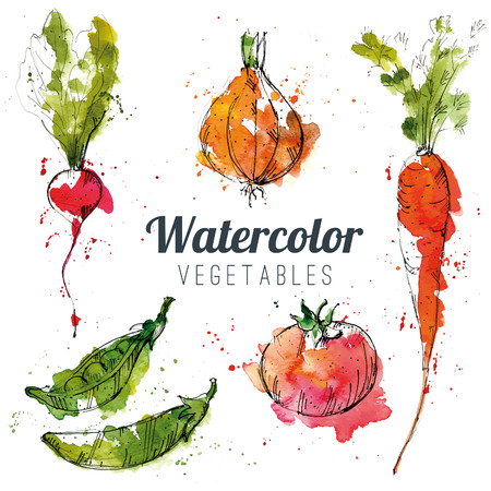 carrot isolated: Set of watercolor vegetables