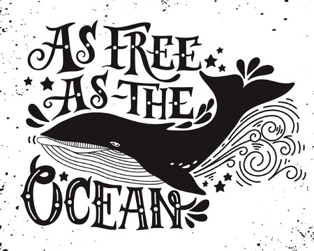 whale: As free as the ocean. Quote. Hand drawn vintage illustration with hand lettering and a whale. This illustration can be used as a print on t-shirts and bags or as a poster. Illustration