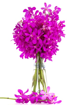 Purple orchids bouguet in a vase isolated on white background