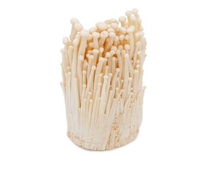 Bunch of enoki mushrooms isolated on white background