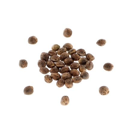 Hemp seeds isolated on white background.