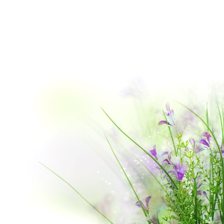 Beautiful spring flower background with white copy space  photo