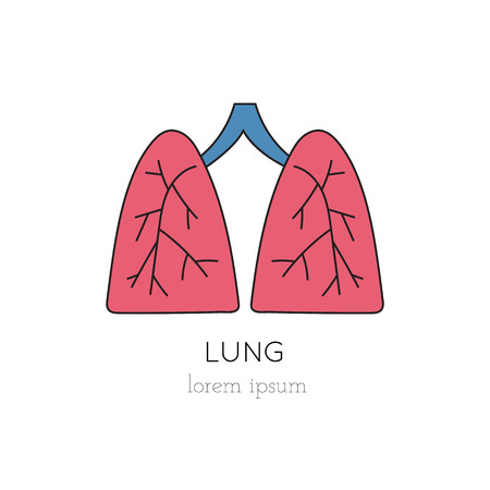 Vector lungs thin line icon, logo template illustration. Part of Organ Donation set. Colored pictogram, healthcare medicine isolated symbol. Simple mono linear modern design.