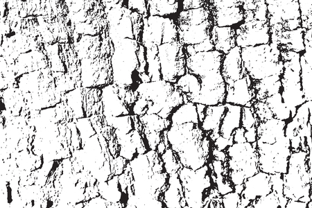 plywood: A Vector Wood texture. Abstract background, tree bark. Overlay illustration over any design to create natural wooden effect and depth. For posters, banners, retro and urban designs.