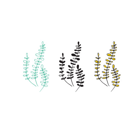 Vector hand drawn seaweeds. Isolated individual objects, algae. Sea clipart for greeting cards, weddings, stationery, surface design, scrapbooking. Part of a large sea collection.