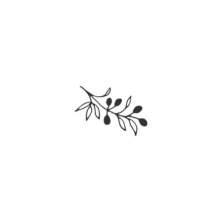Vector floral hand drawn element in elegant and minimal style. Isolated object, branch with berries. Black on white illustration. For badges, labels and branding business identity.