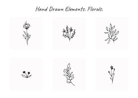 Ensemble vectoriel d'éléments floraux dessinés à la main dans un style élégant et minimal. Objets isolés, fleurs et branches avec des feuilles. Pour les badges, les étiquettes, les logotypes et l'identité d'entreprise de marque.