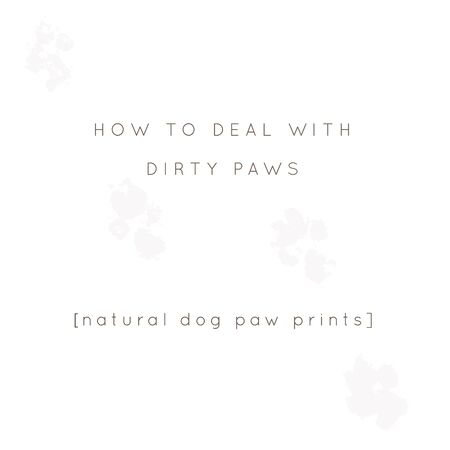 Vector minimal background for a pet related topic with paw prints. Vector hand drawn objects with a text.