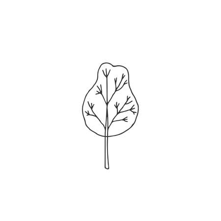 Vector hand drawn tree. Simple icon, isolated object.