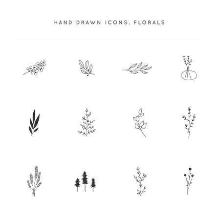 Hand drawn flowers and leaves. Set of vector floral icons. Zdjęcie Seryjne - 153319391