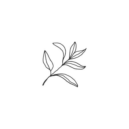 Vector hand drawn floral icon. A branch with leaves. Ilustracja