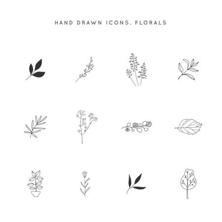 Flowers and leaves. Set of vector hand drawn floral icons.