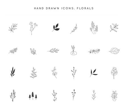 Set of vector hand drawn floral icons. Flowers and leaves. Zdjęcie Seryjne - 154249534