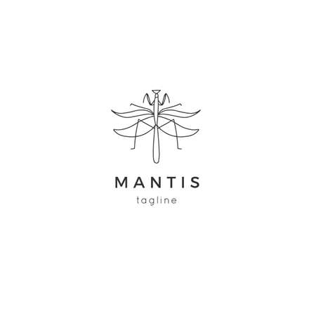 Vector insect template with a mantis graphics. Minimal hand drawn illustration.