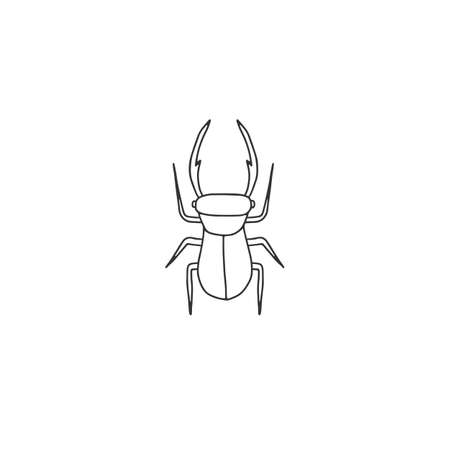 Vector insect icon, a bug, stag beetle. Hand drawn simple illustration.