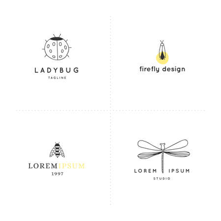 Set of vector hand drawn   templates with simple insect graphics. Ilustracja