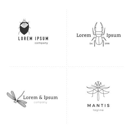 Set of vector simple  templates. Hand drawn insect icons. Zdjęcie Seryjne - 156685436