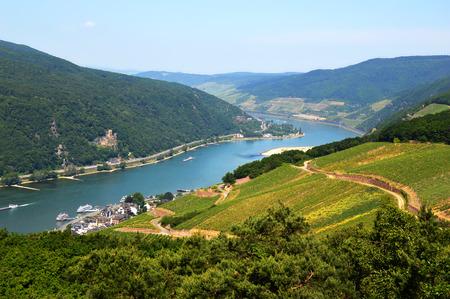 ドイツのリューデスハイムに丘の上からライン川の素晴らしい景色