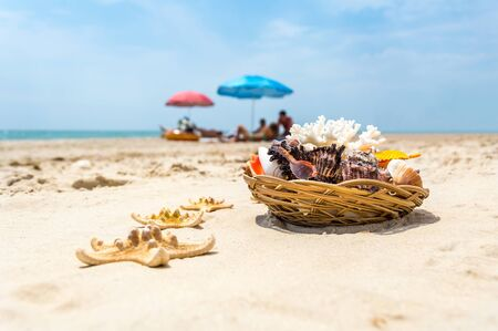 Seashells, coral and starfish on golden sandy beach near the sea on a sunny day. Blurred tourists under colorful sun umbrellas in background. Summer vacation and relaxation concept Stock Photo