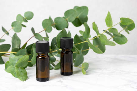 Two amber bottles of eucalyptus essential oil and fresh eucalyptus leaves on marble table. Natural cosmetic ingredients for skin care products. Herbal spa, wellness treatment and relaxation concept