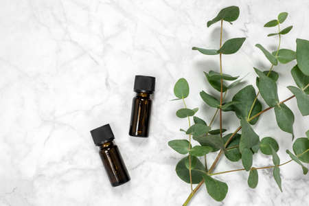 Two amber bottles of eucalyptus essential oil and fresh eucalyptus branch on marble background. Natural cosmetic ingredients for skin care products. Spa, wellness and relaxation. Top view, copy space Фото со стока