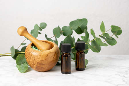 Natural aromatherapy with eucalyptus essential oil in bottles, aromatic bath salt and eucalyptus branch. Herbal spa, wellness and skin care products. Relaxation and homeopathy with eucalyptus extract