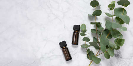 Banner with eucalyptus essential oil bottles and fresh eucalyptus branch on marble background. Natural cosmetic ingredients for skin care products. Spa, wellness and relaxation. Top view, copy space